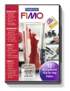 FIMO DVD Workshop